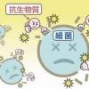 抗生物質はニキビに効かない?